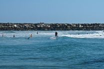 Surfing in Yamba