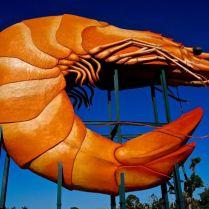 The giant prawn!