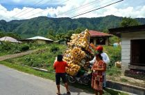 Deliveries on Samosir Island