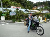 twin pines cameron highlands