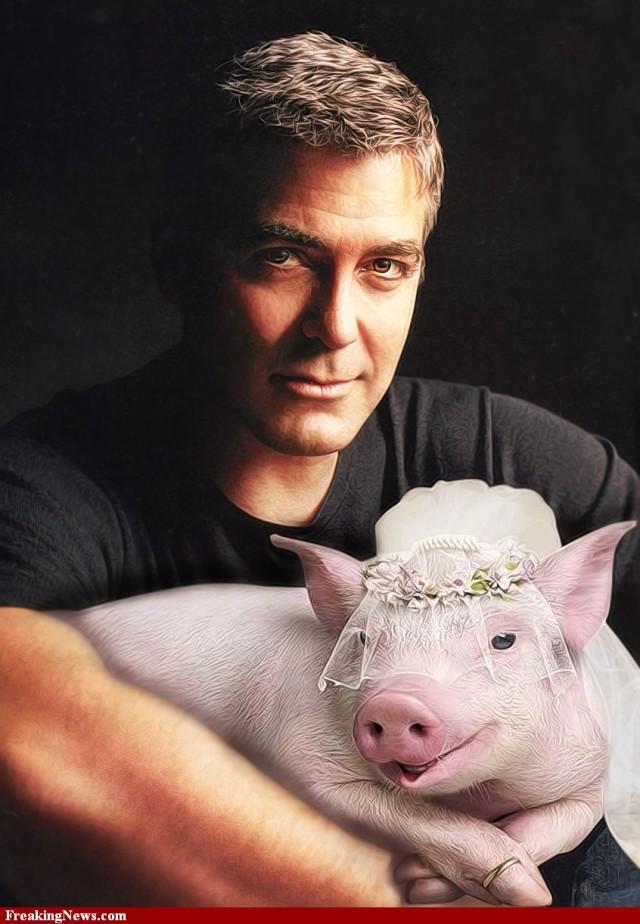 George-Clooney-Marries-His-Pig-85852